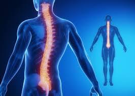 Cervical Spine Surgery hospital