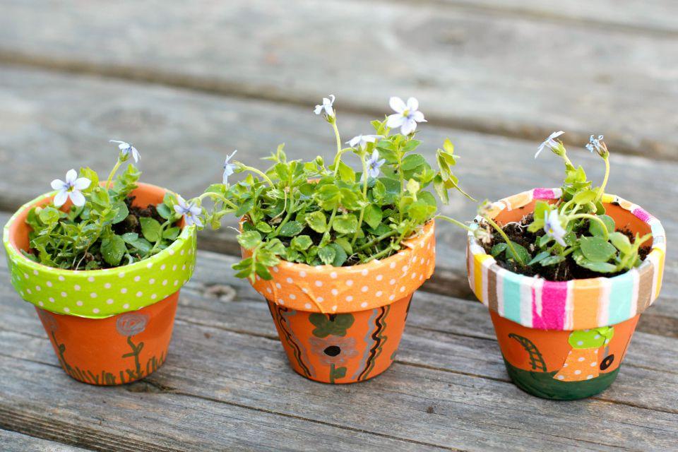 Tiny Flowering Pots